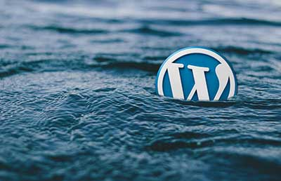 expert-site-wordpress-photo